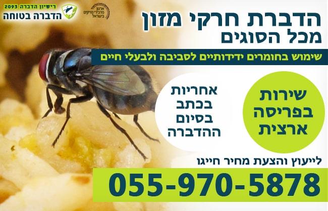 הדברת חרקי מזון במסעדה ובבית